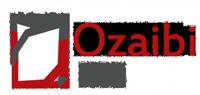 Mohsen S. Ozaibi